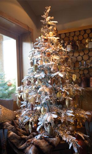 tree_1_blog