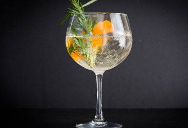The GINDEX, gin and tonic, balloon glass